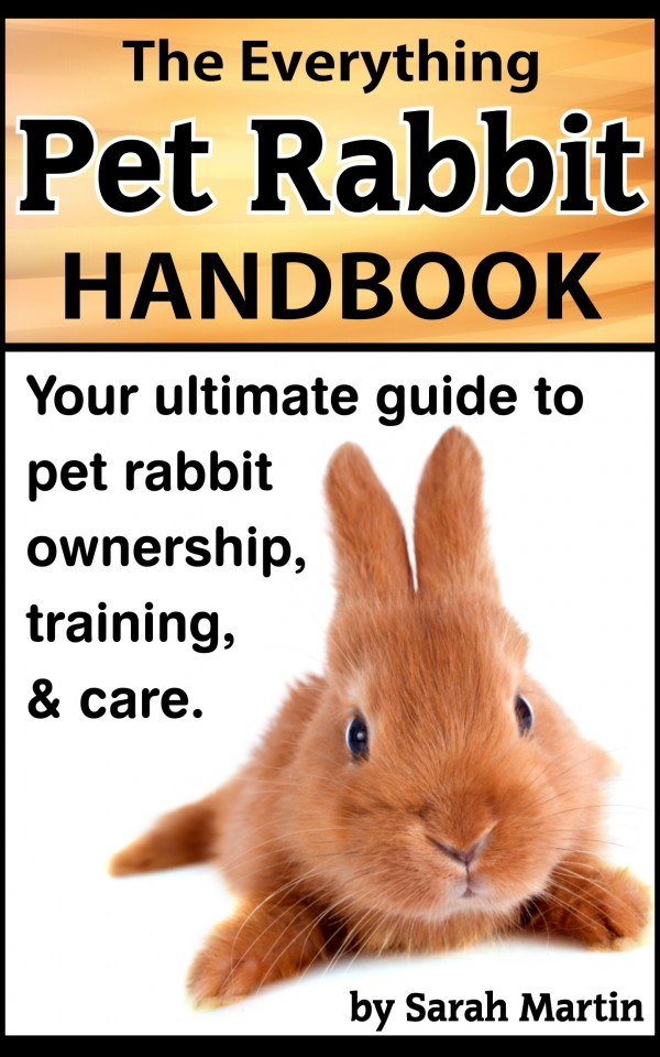 Book Cover – Pet Rabbit